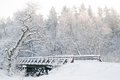 Winter scenery fairytale forest bridge snowy trees elegant composition Stock Photos