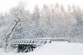 Winter scenery. Fairytale forest, bridge, snowy trees Royalty Free Stock Photo