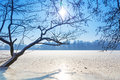 Winter scenery of frozen lake Royalty Free Stock Photos