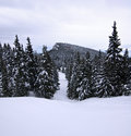 Winter scenery idyllic in the slovak mountains Royalty Free Stock Photo
