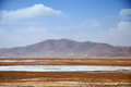 Winter scenery in qinghai tibet plateau  there are frozen rivers barren field and snow mountains under blue sky animals and Stock Image