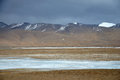 Winter scenery in qinghai tibet plateau  there are frozen rivers barren field and snow mountains under grey sky animals and Royalty Free Stock Photography