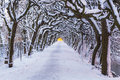 Winter scenery of snowy park in gdansk poland Stock Photos