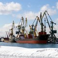Winter in seaports. Stock Images
