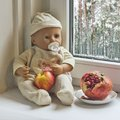 Winter season a composition with a doll sitting on window Royalty Free Stock Images