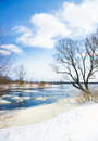 Winter season frozen river and trees in Stock Images