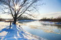 Winter season river and trees in Royalty Free Stock Photos
