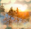 Winter season scene in norway mountains trysil Stock Photos