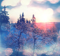 Winter season scene in norway mountains trysil Stock Image