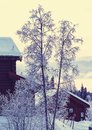 Winter season scene in norway mountains trysil Royalty Free Stock Photos