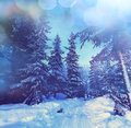 Winter season scene in norway mountains trysil Stock Images