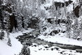 Winter season in Yellowstone Royalty Free Stock Photo