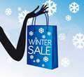 Winter shopping sale Stock Photography