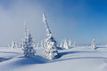 Winter in Siberia Royalty Free Stock Photo