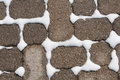 Winter snow between brick pavers sidewalk with in the cracks during the Stock Image