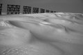 Winter, snow desert and fence. Black-and-white. Royalty Free Stock Photo