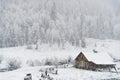 Nieve Que cae en cabina en bosque