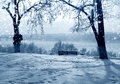 Winter snowstorm nature in russia kostroma city Royalty Free Stock Photos