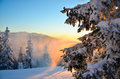 Winter snowstorm at sunset Royalty Free Stock Photo