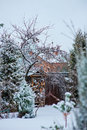 Winter snowy garden view with wood shed and fence Royalty Free Stock Photo