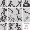 Winter sport icons set Stock Images