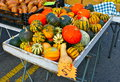 Winter Squash Royalty Free Stock Image