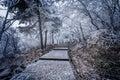 Winter stairway view in Huangshan National park.