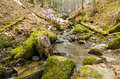 Winter stream running downhill over moss covered stones in Royalty Free Stock Images