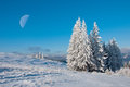 Winter sun landscape in a mountain forest and the moon Royalty Free Stock Photo