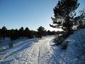 The winter sunny day in crimea Stock Photo