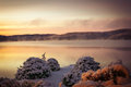 Winter sunrise cold morning on a lake after a snowstorm quebec canada Royalty Free Stock Images