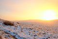 Winter sunrise at the moors in North Yorkshire Royalty Free Stock Photo