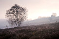 Winter sunrise over countryside landscape Royalty Free Stock Photos