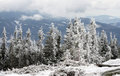 Winter in tatras slovakia cold weather Stock Photos
