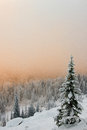 Winter tree landscape with a and valley fog in the background Stock Photo
