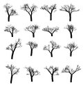 Winter tree set. Dry with fallen leaves. Dead silhouette. Vector illustration
