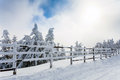 Winter trees and wooden fence covered in snow that borders a mou Royalty Free Stock Photo