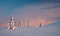Winter tundra at sunrise finland lapland Stock Image