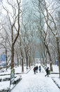 Winter view bryant park a snow filled of during storm janus in manhattan Stock Images