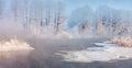 Frozen winter morning