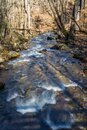 Winter View of a Wild Mountain Trout Stream Royalty Free Stock Photo