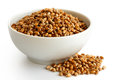 Winter wheat kernels Royalty Free Stock Photo