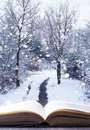 Winter woodland book open with background and falling snow Stock Images
