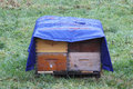 Winterized bee hive boxes a tarp or plastic covering is used to protect from the damp winter cold Royalty Free Stock Images