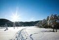 Winterlandschaft Lizenzfreies Stockfoto