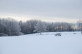 Winters evening on a maine farm falls Royalty Free Stock Images