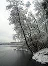 Wintertime lake liepnitzsee in winter germany Royalty Free Stock Image