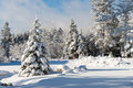 Wintertime in Nova Scotia Royalty Free Stock Photo