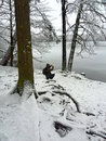 Wintertime photographer in a wood in winter germany Stock Photos