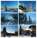 Wintry collage Royalty Free Stock Image
